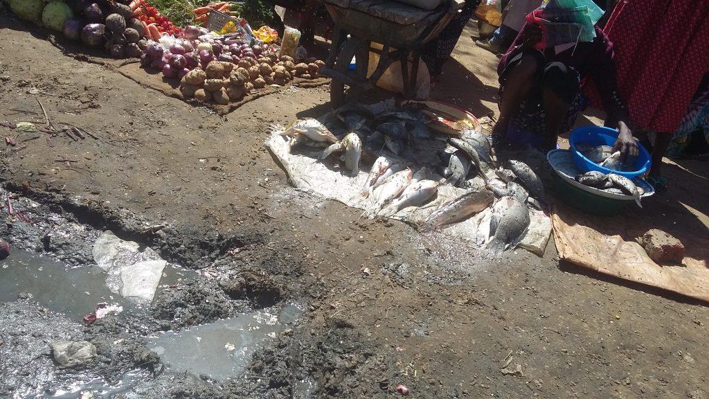 Dans les marchés de N'Djaména: le poisson frais, mal conservé par des vendeuses