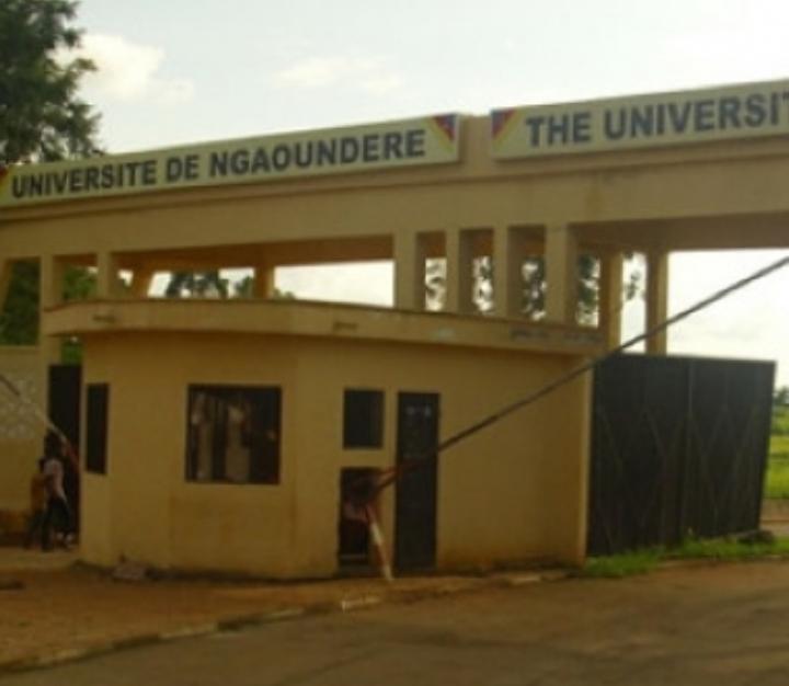 Éducation: des étudiants tchadiens  au Cameroun  venus pour les fêtes peinent à repartir