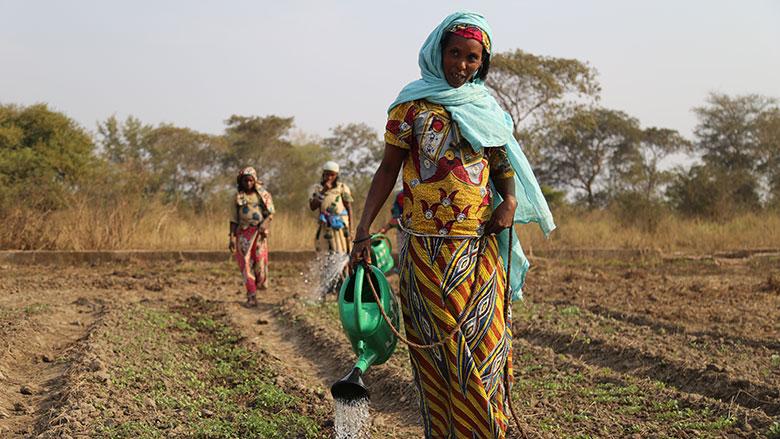 Sécurité alimentaire : les ménages de la plupart des zones du pays sont en stress alimentaire