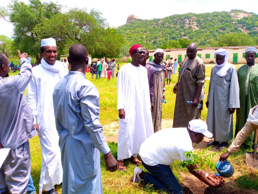 À Zerli 1, dans le Guérara, une association des jeunes met en terre plus de 1 000 plants